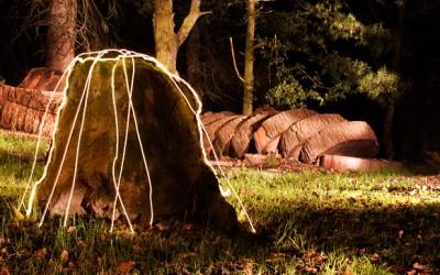 Forest Light – Lighting Scotland